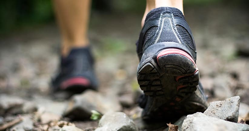 Das Wandern ist des Müllers Lust: Ist Wandersport wirklich gesund?