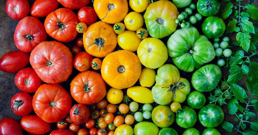 Der neuste Trend – Essen in Regenbogenfarben