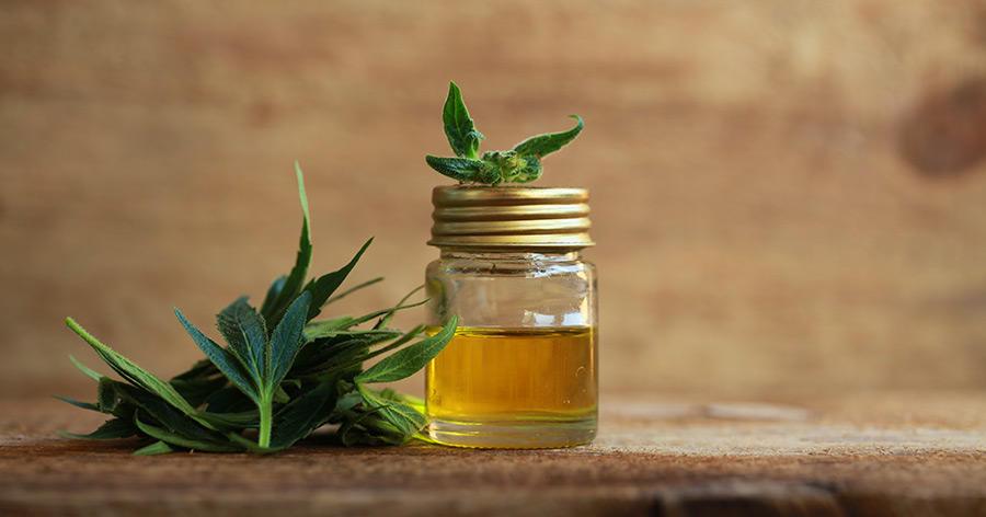 CBD-Öl – ein Heilmittel ohne Rauscherlebnis