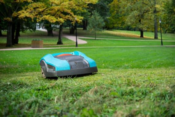 Wie ein Rasenroboter die Gartenpflege einfacher macht