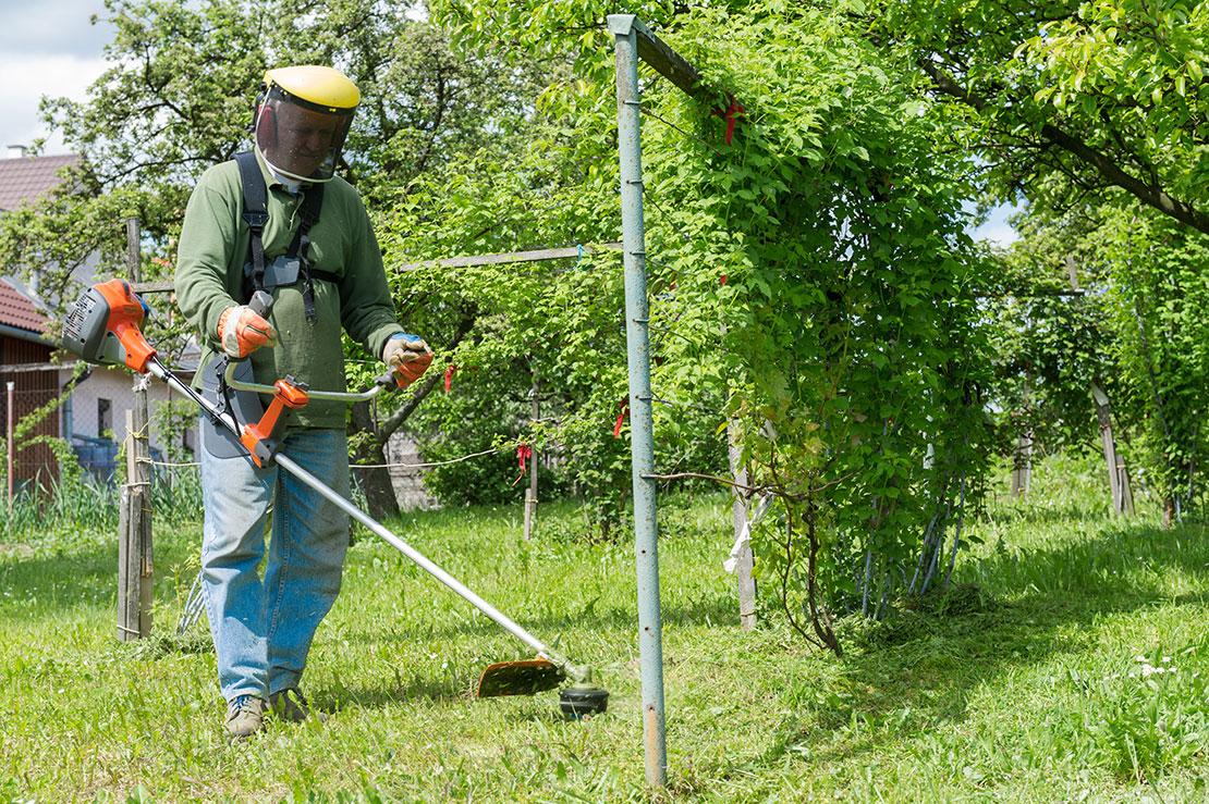Lohnt es sich, einen Rasentrimmer für den Garten zu kaufen?