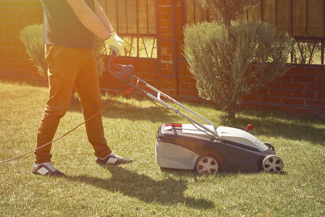 Was braucht ein gesunder und gepflegter Rasen?