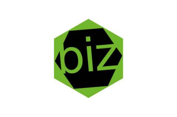 biz-digital-marketing